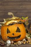 Old moldy pumpkin. Remembering Halloween celebration. Rot on the pumpkin. Halloween scary garden decoration. Stock Images