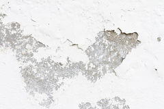 Old moldy wall Stock Photo