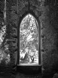 Old monastery stone window. Overloking a forest Stock Photography