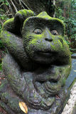 Old monkey sculpture in jungle, Sacred Monkey Forest Sanctuary. Stock Images