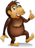 An old monkey standing Stock Image