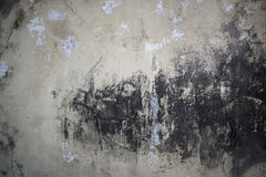 Old monotone cement wall with grunge image. Can be used for background Stock Image