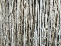 Old mop that has been used for a long time. stock photos