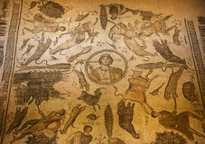 Old mosaic in Hatay archeology Museum,Turkey Stock Images