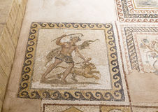 Old mosaic in Hatay archeology Museum,Turkey royalty free stock photos