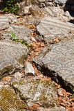 Old mosaic in Olympos Turkey Royalty Free Stock Images