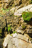 Old Moss Covered Stone Wall Stock Photo