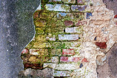 Old mossy brick wall Stock Photo