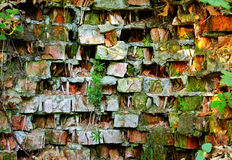 Old mossy brick wall background Stock Photography