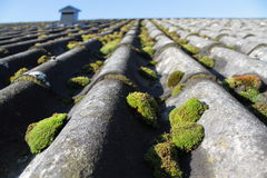 Old and mossy roof Royalty Free Stock Images