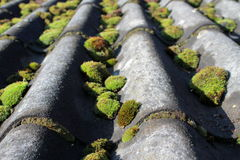 Old and mossy roof Stock Images