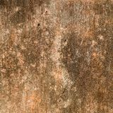 Old mossy stone background Royalty Free Stock Images