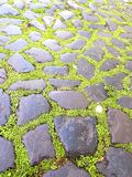 Old mossy stone bricks and pavement royalty free stock photos