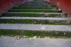 Old mossy stone stairs Stock Images