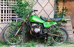 Old motorcycle with the plants Royalty Free Stock Images