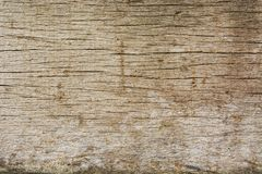 The old and mottled wood texture royalty free stock images