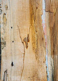 Old mouldering oak wood texture Royalty Free Stock Photos
