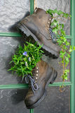 Old mountain boots. Used as flower pots on the entrance door of a house Royalty Free Stock Photos