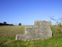 Old Mounting Block Stock Photography
