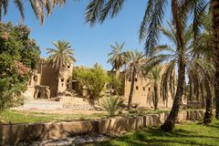 Old mud houses and palm tree in the old village of Al Hamra. Oman royalty free stock photography