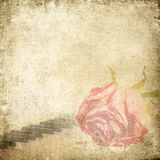 Old music background with rose. Vintage background. Stock Images