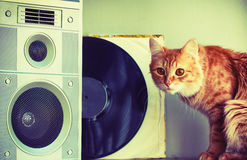 Old music speaker in foreground, red cat and record Stock Photos