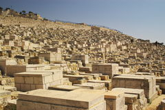 Old muslim cemetery. On olive mountain in old Jerusalem Royalty Free Stock Photography