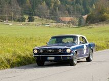Old mustang stock photography