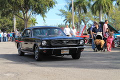 Old mustang driven Royalty Free Stock Image