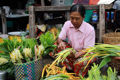 Old Myanmar woman selling vegetables Royalty Free Stock Images