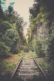 Old mystic railroad in a forest Royalty Free Stock Photo