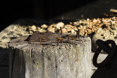Old nails. In wood block Royalty Free Stock Photo