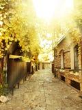 Old Nessebar, Bulgaria Royalty Free Stock Photography