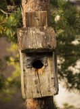 Old nesting box Royalty Free Stock Photo