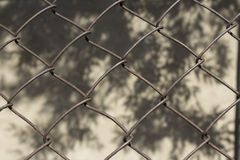 Old netting grid Royalty Free Stock Images