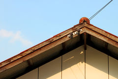Old network electrical cables on house roof Royalty Free Stock Image