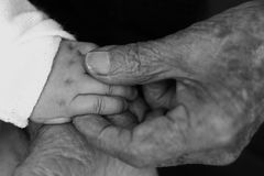Old and New hands. Picture of Old and New hands royalty free stock photos