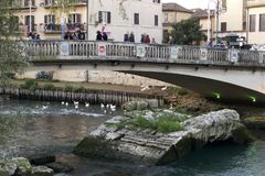The old and new `Ponte Romano` bridges royalty free stock image
