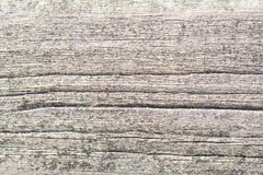 Wood background patterns in the old and new wood pieces. Old and new wood backgrounds of planks and beams, photographed with macro, patterns and worn surfaces stock photos