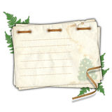 Old New Year's card postal. With a fern on isolated white background Royalty Free Stock Photography