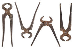 Old nippers. Front view of different shape of old nippers Royalty Free Stock Images