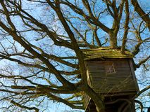 Ancient nostalgic weathered wooden treehouse stock images