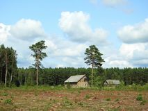 Old not living homestead near forest, Lithuania royalty free stock photos