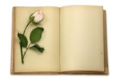 Old notepad and dried rose Royalty Free Stock Image