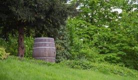 Old oak barrel Royalty Free Stock Photo