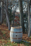Old Oak Barrel at Vineyard Stock Photos