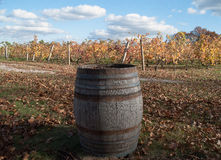 Old Oak Barrel at Vineyard Royalty Free Stock Photos