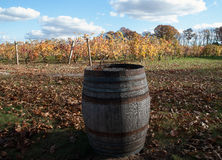 Old Oak Barrel at Vineyard Royalty Free Stock Image