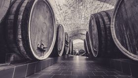 Old oak barrels in an ancient wine cellar. stock photos