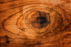 Old oak board wood knot Stock Image